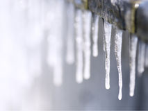 Sunlit icicles Royalty Free Stock Image