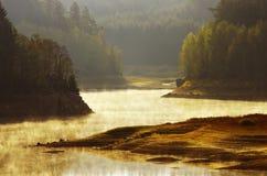 Sunlit lake Royalty Free Stock Photo