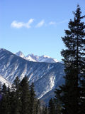 Sunlit Mountain. Snow and sunlight in the Rocky Mountains of Colorado royalty free stock photography