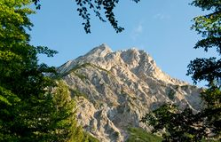 Sunlit mountain bordered with branches. Austrian Alps' mountain peak on a sunny day, bordered by greenery royalty free stock image