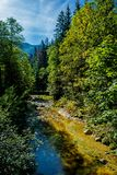 Sunlit Mountain Creek with Clear Water in Austria Royalty Free Stock Photos