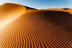 Sunlit Namibian desert dunes sand ripple pattern rises to ridge. Sunlit Namibian desert dunes sand ripple pattern rises to top ridge. This desert is the oldest Royalty Free Stock Photos