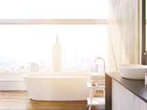Sunlit New York City bathroom Stock Images