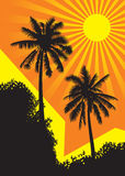 Sunlit palm trees. Against a backdrop of buildings under the tropical sun, vector illustration Stock Photo