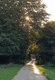 Sunlit path at evening stock photography