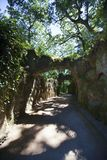 Sunlit path in Quinta da Regaleira stock photo