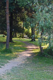 Sunlit Path by the side of Green Lake Royalty Free Stock Image