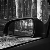Sunlit pine forest in a mirror of black Opel Astra H in summer Macha`s land tourist area Stock Photo