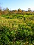 Sunlit Prairie Landscape Royalty Free Stock Image