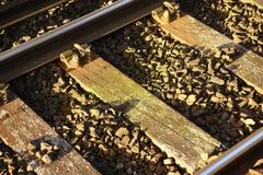 Sunlit Railway Track Royalty Free Stock Photos