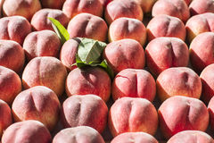 Sunlit ripe peaches leaf on market stall Royalty Free Stock Photos