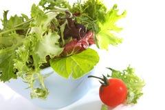 Sunlit Salad Royalty Free Stock Photography