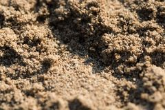 Sunlit sandy beach grains macro closeup. Background texture royalty free stock images