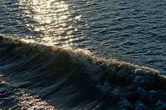 Sunlit seascape with waves royalty free stock photography