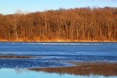 Clinton Lake State Recreation Area. Sunlit shoreline at Clinton Lake State Recreation Area in central Illinois stock photography
