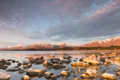 Sunlit stones on sunset, Lake Tekapo, New Zealand Royalty Free Stock Images