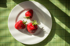 Sunlit Strawberries Royalty Free Stock Photography