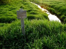 Sunlit stream.. and blank sign Stock Image