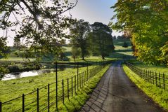 Sunlit Track Through Dallam Park Stock Photography
