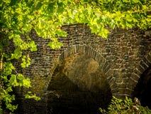 Sunlit Tree Framing Arch in Bridge Royalty Free Stock Photos