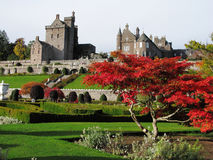 Sunlit tree and scottish castle Royalty Free Stock Photos
