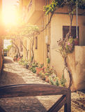 Sunlit village street Stock Photography