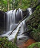 Sunlit Wasserfall Stockbilder