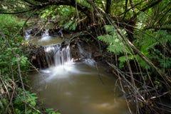 sunlit waterfall Στοκ εικόνες με δικαίωμα ελεύθερης χρήσης