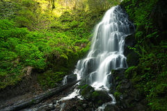 sunlit waterfall Royaltyfri Foto