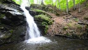 sunlit waterfall видеоматериал