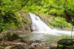 sunlit waterfall 免版税库存照片