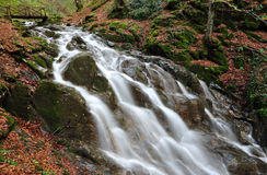 sunlit waterfall Royaltyfria Foton