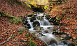 sunlit waterfall Arkivbild