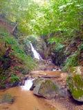 sunlit waterfall 库存图片