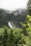 sunlit waterfall Royaltyfri Fotografi