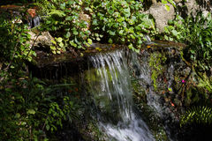 sunlit waterfall Στοκ φωτογραφία με δικαίωμα ελεύθερης χρήσης