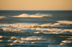 Sunlit Waves. Sunrise light reflects off small waves fighting agains heavy wind along the Oregon coast Royalty Free Stock Image