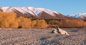 Sunlit willow trees and balancing rocks on a lake shore at early. Morning, New Zealand royalty free stock photo
