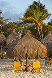 Sunloungers tropicali Fotografie Stock Libere da Diritti