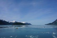Sunmmer в Аляске Стоковая Фотография