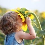 Sunny Stock Photos
