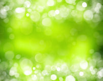 Sunny abstract green nature background. And bokeh lights Stock Photography