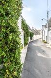 Sunny Alberobello street with trullo houses. A beautiful Alberobello street with green plants  and trullo houses Royalty Free Stock Image