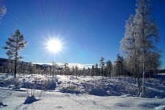 Sunny arctic landscape, norway royalty free stock photography