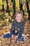 Sunny autumn Royalty Free Stock Photo
