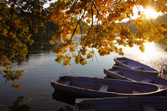 Sunny autumn afternoon on the lake. A sunny autumn day ride with the boats on the lake Royalty Free Stock Photo