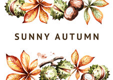 Sunny autumn background. Chestnuts and leaves. Watercolor template Royalty Free Stock Images