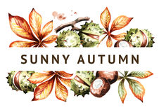 Sunny autumn. Chestnuts and leaves background. Watercolor template Royalty Free Stock Photo