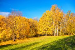 Sunny autumn in countryside Stock Photos