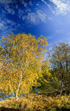 Sunny autumn day Royalty Free Stock Photo